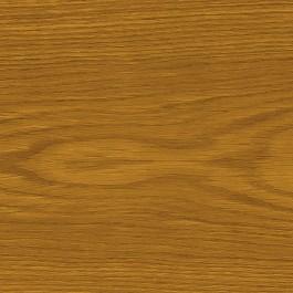 Dąb flader - złoty dąb  + 818,00 Zł