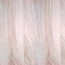 Wiąz perłowy 3D