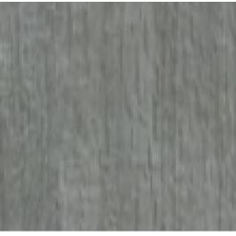 Dąb Srebrzysty - Portalamino  + 120,00 Zł