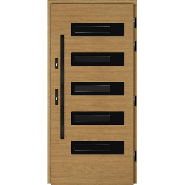 Drzwi Zew. Drewniane DOORSY BADOLATO BLACK 03