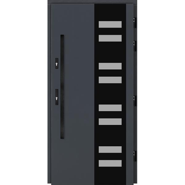 Drzwi Zew. Drewniane DOORSY CASSINO BLACK 01