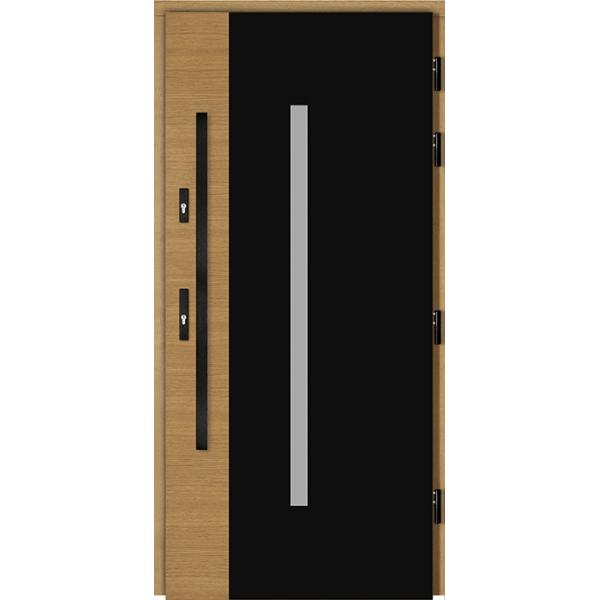 Drzwi Zew. Drewniane DOORSY GLACIER BLACK 01