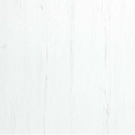 Sosna biała - DRE Cell